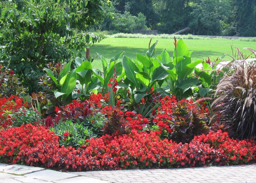 Hours « Wellfield Botanic Gardens