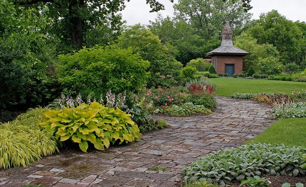 Morning Path 171 Wellfield Botanic Gardens