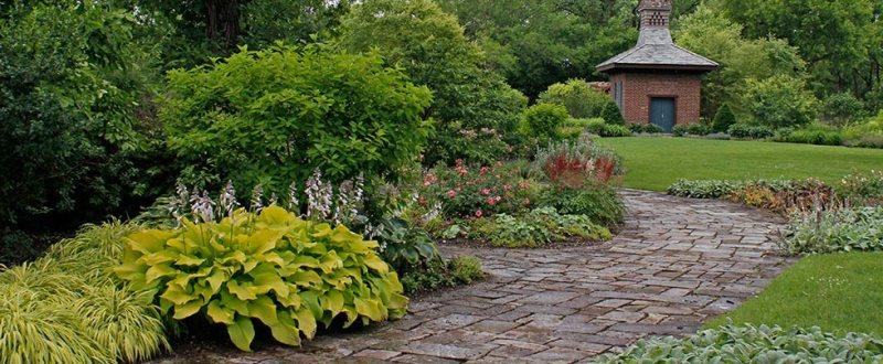 Morning Path « Wellfield Botanic Gardens