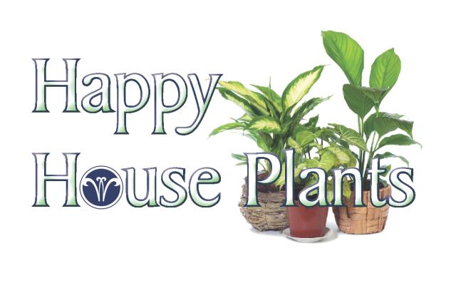 Happy House Plants