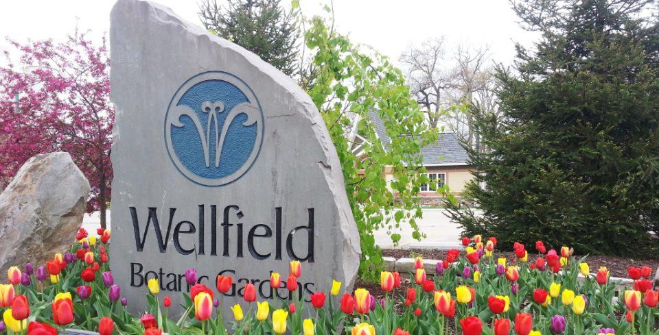 Latest News « Wellfield Botanic Gardens « Page 32