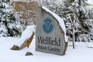 wellfield-botanic-garden-photo-courtesy-of-lindahl-photography-6