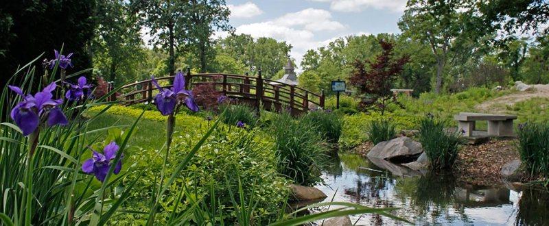Wellfield Botanic Gardens « Wellfield Botanic Gardens