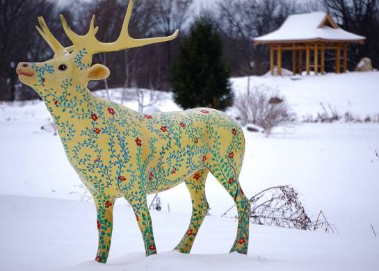 elk-in-snow-tb-hebert