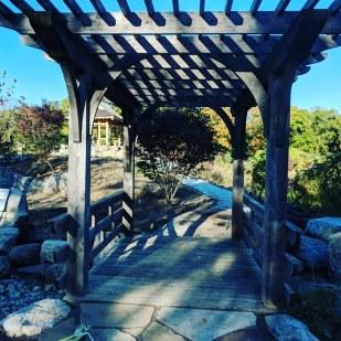 sada's visit november and trellis bridge (1)