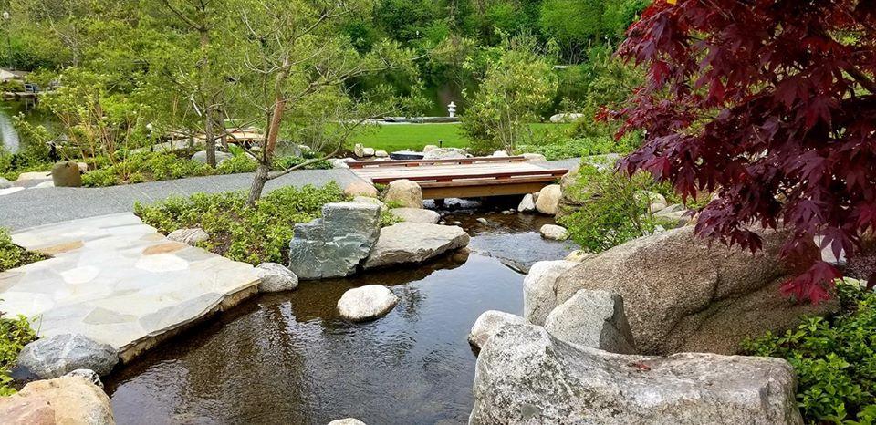 Island Garden mountain stream