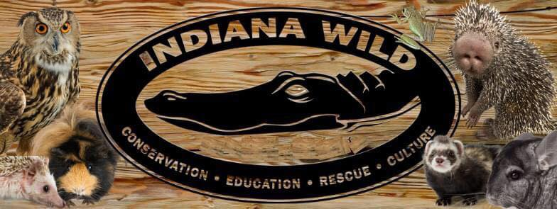 Indiana Wild Logo